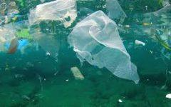 Ocean Pollution Prevention