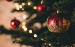 Battle of Real VS. Fake Christmas Trees