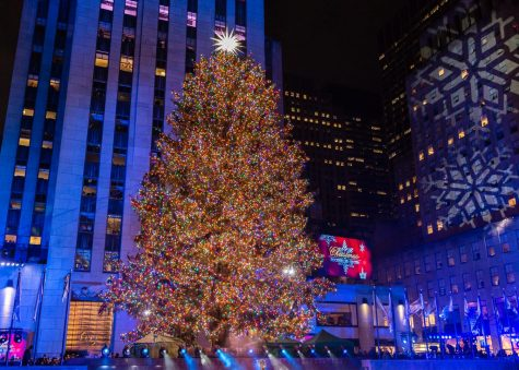 The History of Christmas Trees and Other Decorations