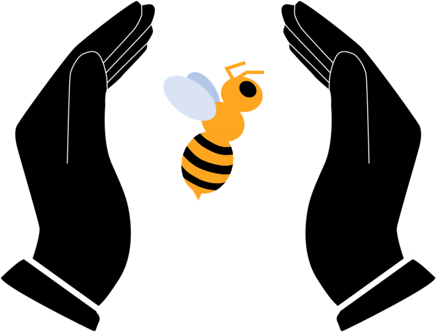 Save+the+Bees%21