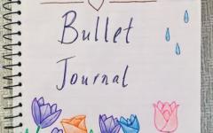 One Week of Bullet Journaling